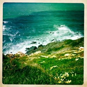 coastal rivers2